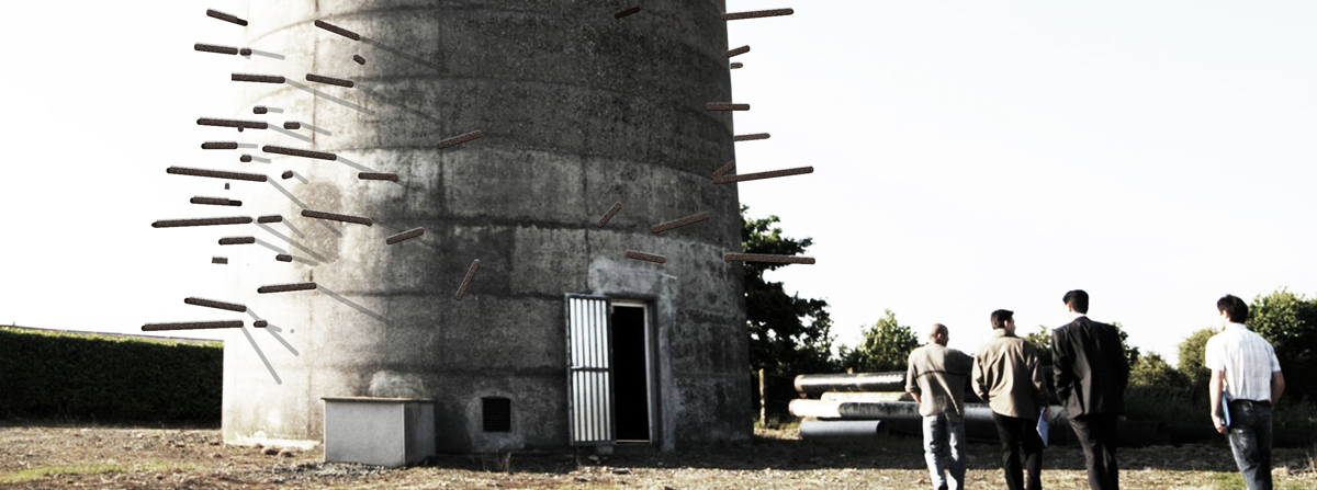 Château qui pousse / proposition d'installation // 2010